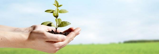 курс обучения экологической безопасности для руководителей и специалистов общехозяйственных систем управления